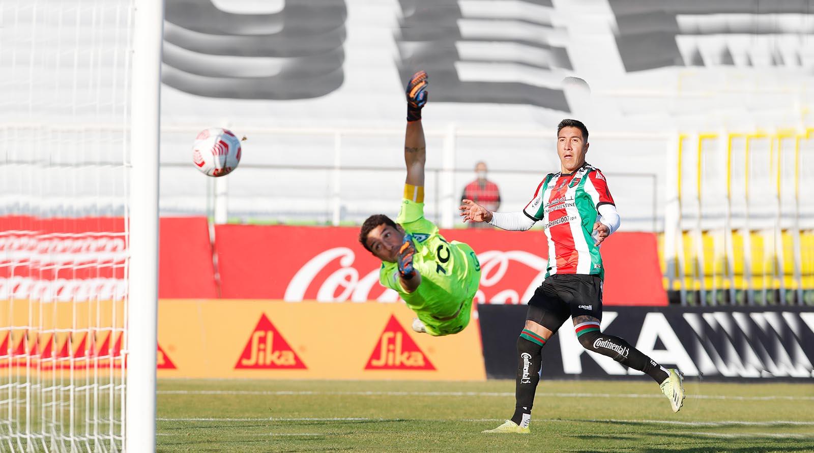 Palestino venció a Santiago Wanderers y se aleja del fondo de la tabla